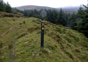 A directional sign along the Blackwater Way in North Cork