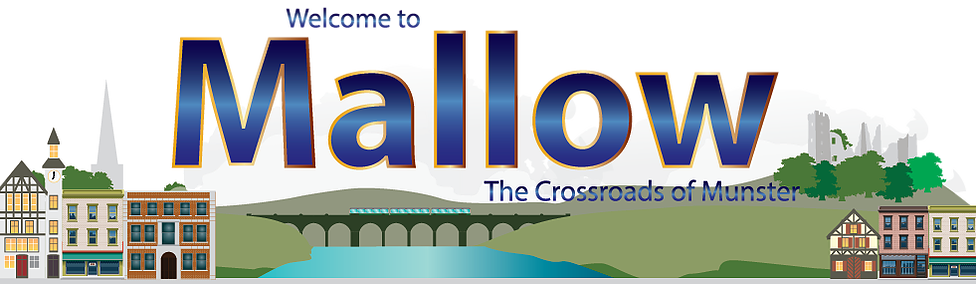 Cork County Council to install PA system to stream music through Mallow Town