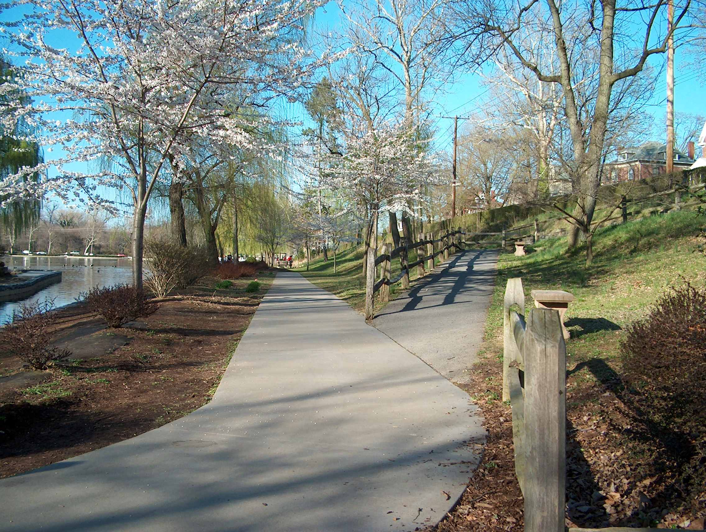 walking-trail-photo