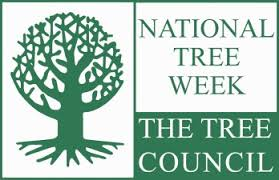 Communities encouraged to organise events ahead of National Tree Week – O'Shea