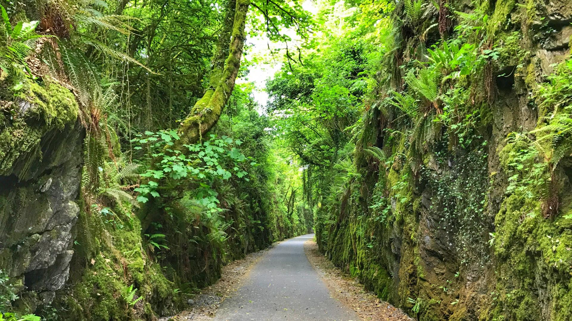 €40,000 for Two Projects in Cork North West under 2019 Outdoor Recreation Infrastructure Scheme