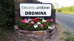 Dromina