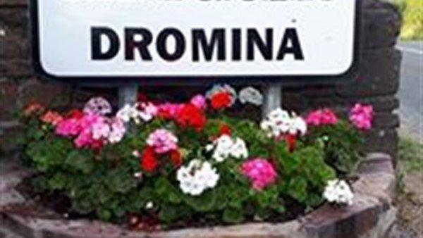 New Graveyard for Dromina